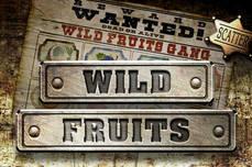 Online Fruitmachines